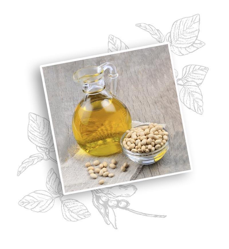 Olej Sojowy - Miya Cosmetics - Kosmetyki